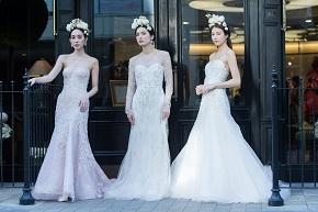 【4月16日17日】ベストセラーコレクション~人気ドレスが集まります~